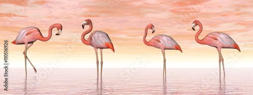 Fototapeta Pink flamingos in water - 3D render