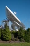 Satellite communication dish