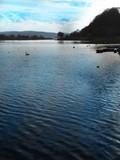 Kemnader See im Ruhrgebiet