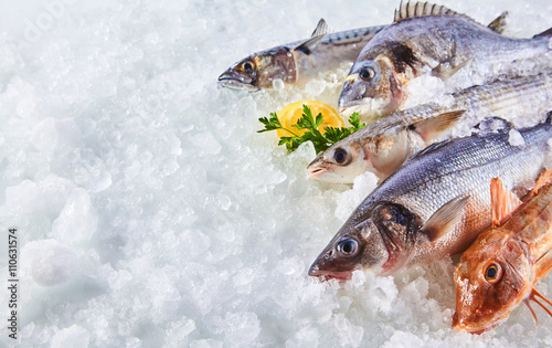 Variety of Raw Fish Chilling on Bed of Ice