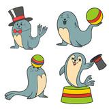 circus seals