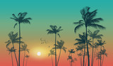 Exotic tropical palm trees  at sunset