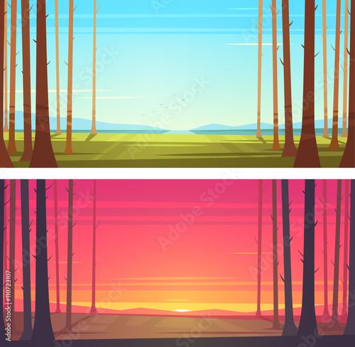 Forest landscape. Vector illustration