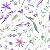 Watercolor Herbal Pattern with Lavender in Purple Color - 110741347