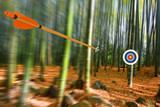 Fototapety Arrow moving through air to target with radial motion blur, part photo, part 3D rendering