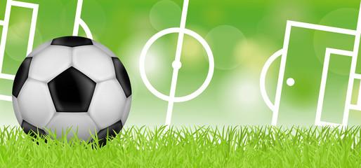 Fußballwiese mit Fußballfeld
