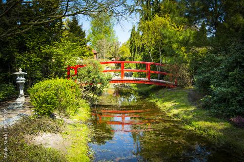 Fototapeta Wooden bridge in japanese garden