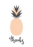 Peach Pink Pineapple Design - 110876158