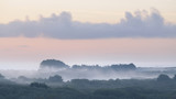 Fog over forest at early sunrise in Brittany, France