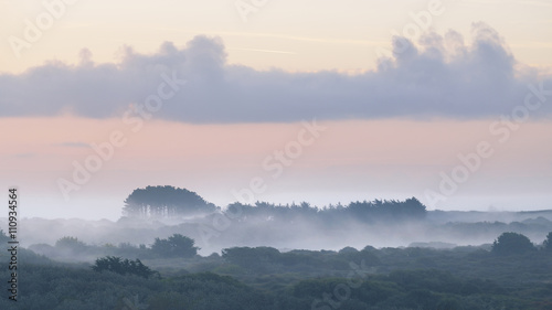 Fog over forest at early sunrise in Brittany, France - 110934564