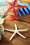 Vacanze e stelle marine