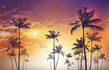 Exotic tropical palm tree landscape   at sunset or moonlight,  with cloudy sky. Highly detailed  and editable - 110993194