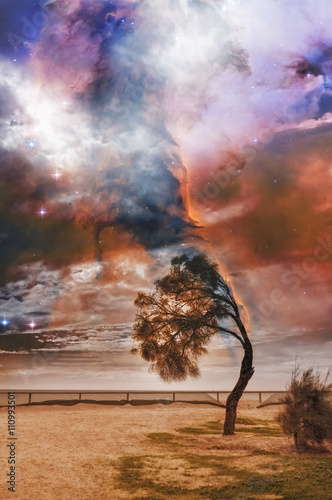 Foto op Plexiglas Draken Alien landscape with lone tree bent in strong wind and bright galaxy in the sky. Elements of this image are furnished by NASA