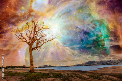 Fototapeta Alien planet fantasy landscape. Tree standing near lake with bright galaxy and stars shining in the sky. Elements of this image are furnished by NASA