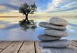equiilibrio y bienestar