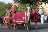 traditional bullock cart , festival , Jaipur, Rajasthan , India