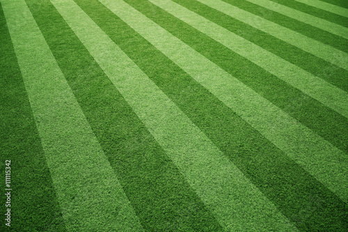 Papiers peints Herbe Sunny soccer playground artificial green grass background.
