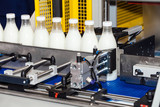 Packaging bottles line in the milk industry