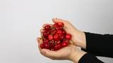 handful cherry