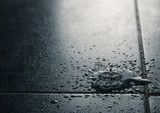 Water Leak, Waterproof Tile Flooring