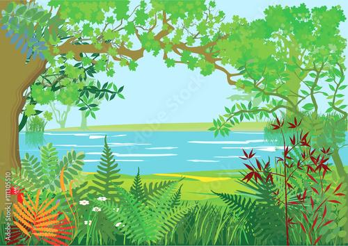 Fototapeta Natur Landschaft mit Bäumen