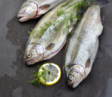 Raw rainbow trouts on a stone board with herbs and lemon, ready for cooking