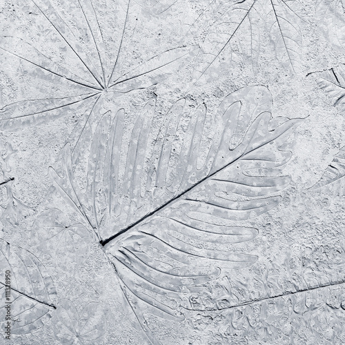 marks of leaf on the concrete © prapann