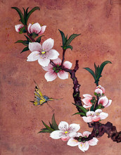 apple blossoming branch