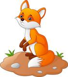 Fox cartoon illustration