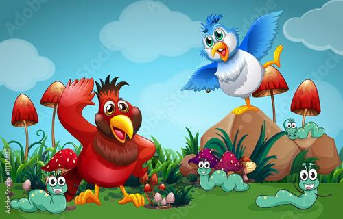 Panel Kuchenny Ptaki I Robaki Bajki Plakat Rysunek
