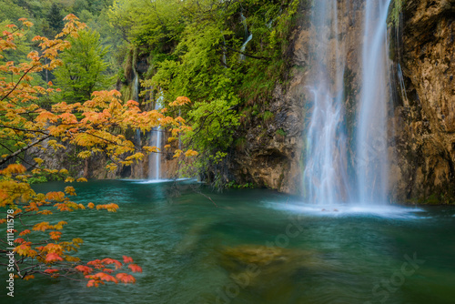 Obraz scene with waterfall and orange maple branch
