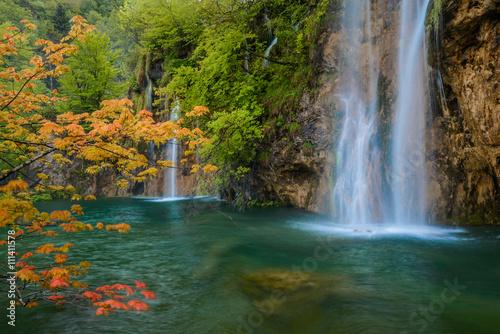 Fototapeta scene with waterfall and orange maple branch