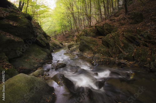 rocky river in natural forest