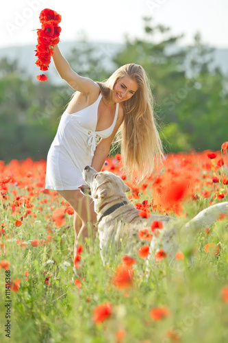 Woman are playing with labrador in red flowers field