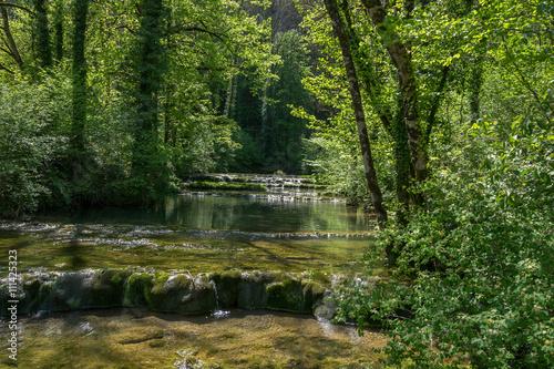 Staande foto Bos rivier Paysage forêt et rivière