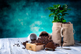 Fototapety Ground coffee with coffe plants