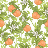 Seamless summer floral pattern. Vector background with flowers a - 111472517