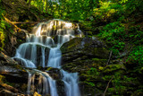 Fototapety beautiful waterfall comes out of a huge rock in the forest