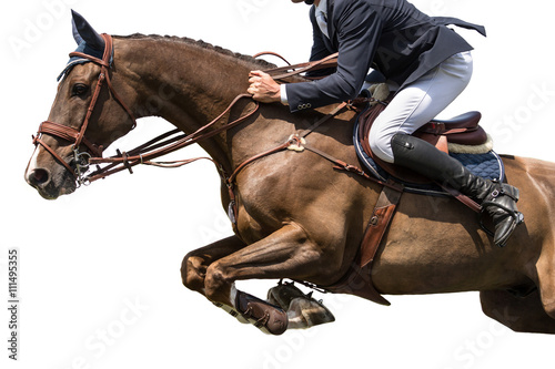 Zdjęcia na płótnie, fototapety, obrazy : Horse Jumping, Equestrian Sports, Isolated on White Background