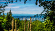 The Skyline of the city of Burnaby as seen from Burnaby Mountain in British Columbia, Canada