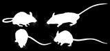 set of four mouses isolated on black