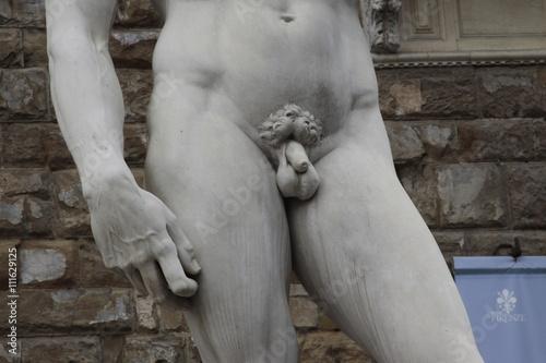 David von Michelangelo Poster
