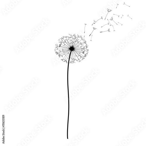 Эскиз татуировки одуванчик, цветение одуванчика © littlemagic