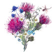 Summer watercolor greeting card with wild flowers, thistles, dan - 111645582