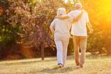 Zwei Senioren gehen spazieren im Sommer - 111750524