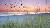 rano za wydmami, wschód słońca nad morzem