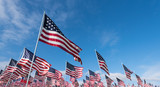 Field of American Flags - 111813997
