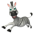fun run Zebra cartoon character