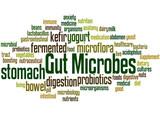 Gut Microbes, word cloud concept 3