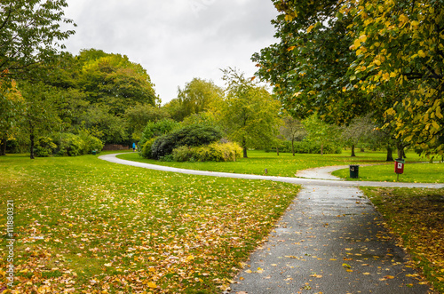 Poster Paved Path in a Park on a Rainy Autumn Day